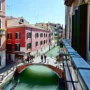 Stars of Venice Venice